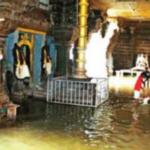 Kanyakumari and Tirunelveli dams see heavy inflow after rain